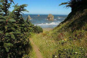 Coastal Hiking Trails near Cannon Beach