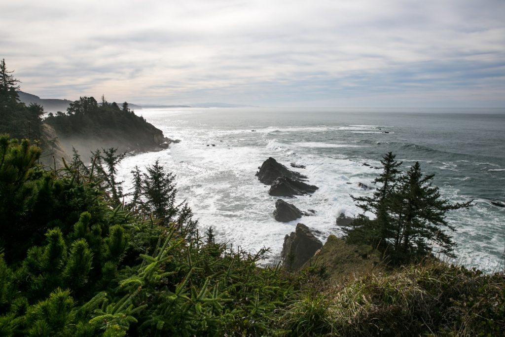 Oregon Coast view in the fog and overlooking the ocean