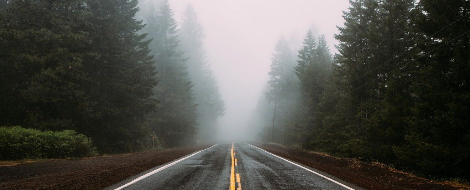 Endless road in the woods and fog in Oregon | Unplugged Getaway