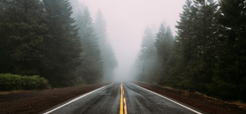 Endless road in the woods and fog in Oregon   Unplugged Getaway